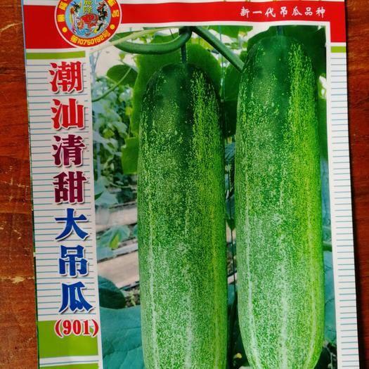 南靖县吊瓜种子