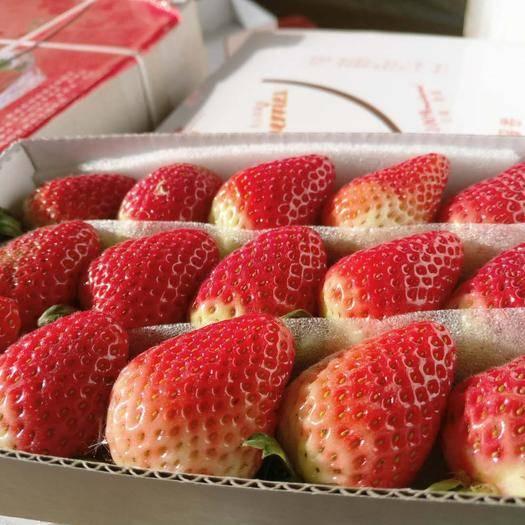 會澤縣 云南夏季草莓