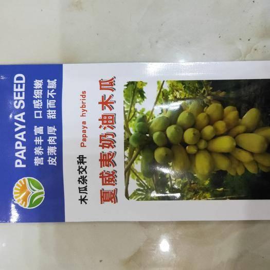 邵阳邵东县木瓜种子 夏威夷奶油木瓜种子100粒/包