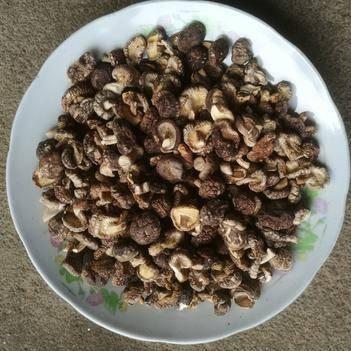 香菇丁  香菇  1.5--2cm   干净  珍珠菇  小菇丁