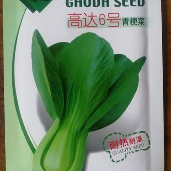 青梗菜种子 青梗菜 耐热 耐雨水 产量高
