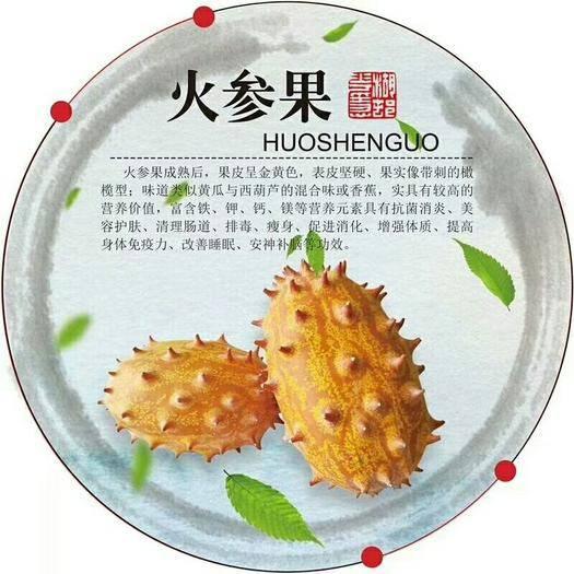 三明大田县火参果 新鲜当季时令水果包邮老人火生果非洲刺角瓜孕妇火星果