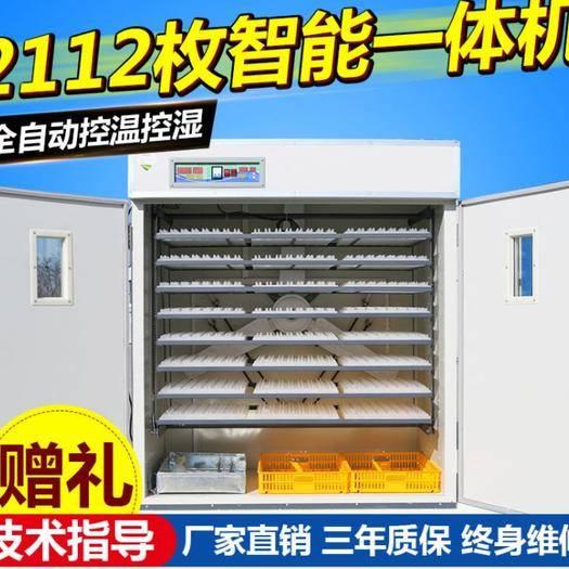 德州德城区养殖孵化机 2112枚自动智能孵化机,孵化器