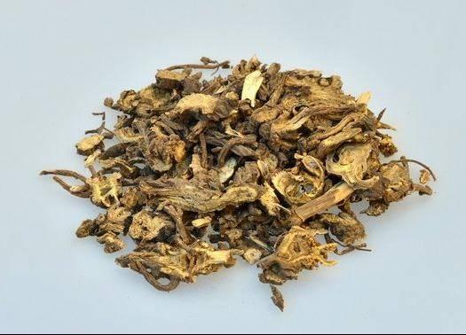 安国市藁本 具有疏风除湿,散寒止痛之功能。