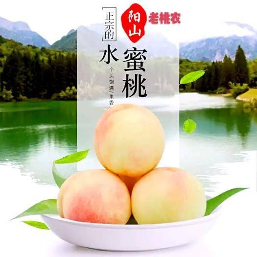 无锡惠山区 预售  无锡阳山水蜜桃 新鲜水果 顺丰包邮 当天采摘