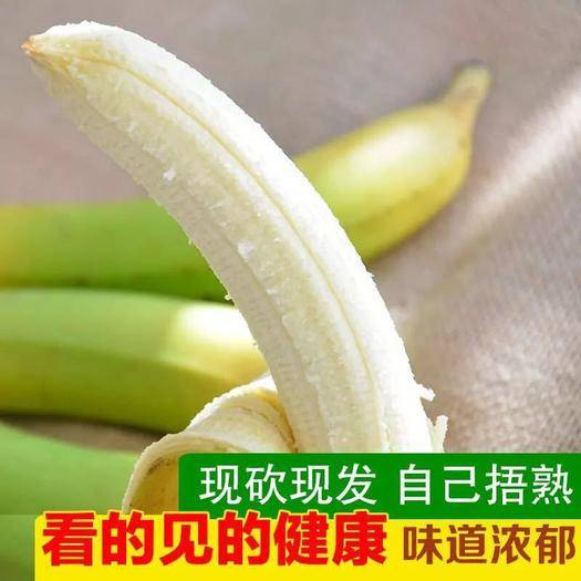 漳州平和縣 天寶香蕉綠皮香蕉現采現發生蕉發貨泡沫箱+真空凈重3斤5斤裝