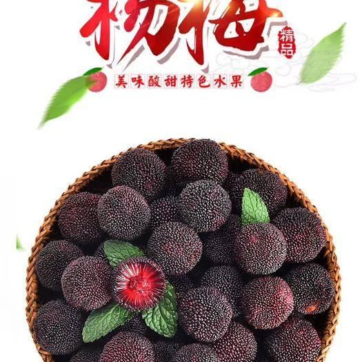 漳州龍海市 浮宮楊梅,一件代發,自有基地,一手貨源