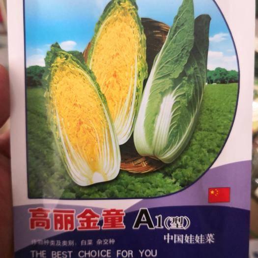 商丘夏邑县 韩国进口,高丽金童A1,娃娃菜种子10克