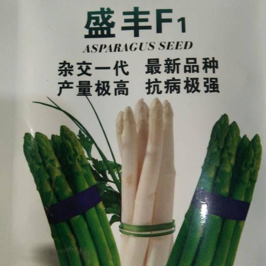 曹县芦笋种子 盛丰f1芦笋种植户的首选。