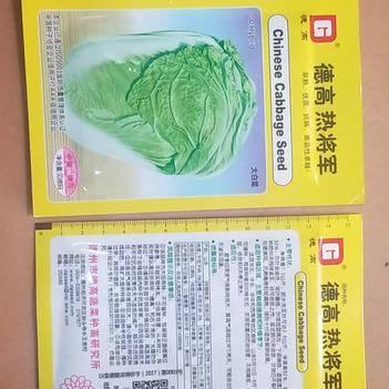 耐热白菜种子