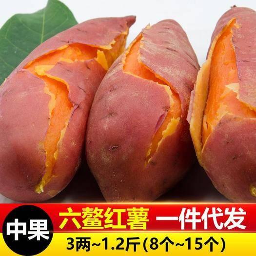 漳州漳浦县 六鳌红薯中果