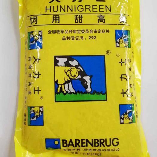 長沙芙蓉區甜高粱種子 養牛羊 高產牧草種子飼用甜高粱 大力士 百綠 進口