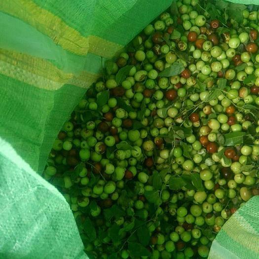 武安市枣核 枣,皮板豆,带皮的皮板豆
