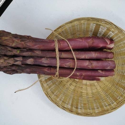 曹縣 鮮紫蘆筍現采現發冰鮮包郵