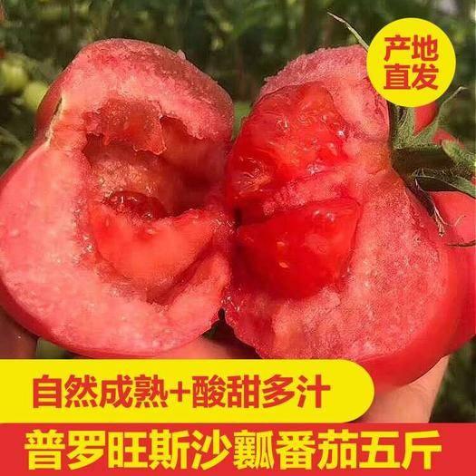 涇陽縣 農家普羅旺斯水果西紅柿 5斤包郵 基地直銷生吃番茄現摘現發