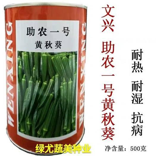 南靖县水果秋葵种子 助农一号水果秋葵深绿有光泽,商品性强,耐寒突出,耐热。