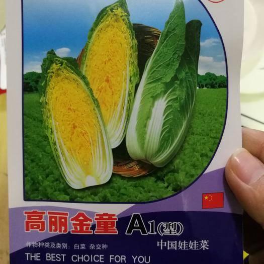 郑州二七区 韩国高丽金童娃娃菜种子10g