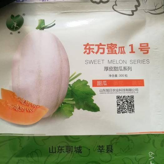 郑州二七区 东方蜜一号甜瓜种子 300粒 亩用三袋