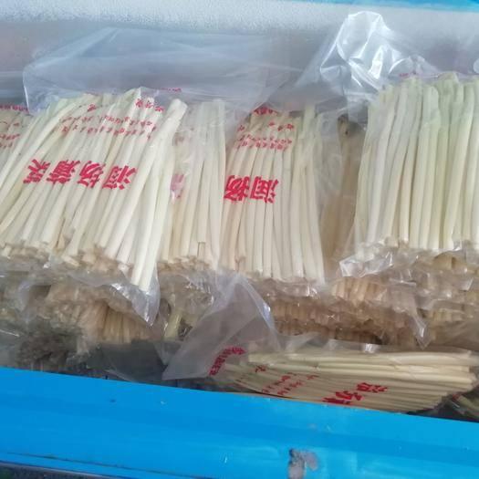 扬州蒲菜 保证优质水源,原生态生长!