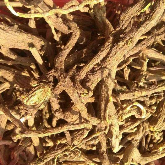 临沂平邑县黄芩 大量供黄苓和地产中药材