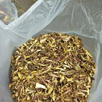 白葱菌 大量出售高脚葱干片,白牛干干片。