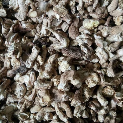黑龙江省牡丹江市东宁市香菇脚 单剪香菇腿