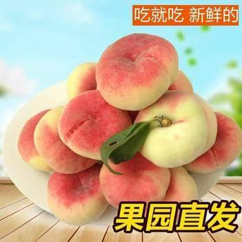 【露天毛蟠桃】新鲜桃子毛蟠桃扁桃应季水果现摘5斤装包邮