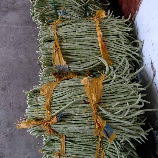 玉林博白县绿龙豆角 40cm~70cm