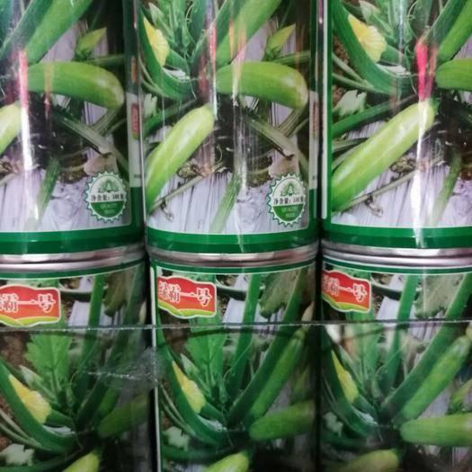 西昌市绿皮西葫芦种子 杂交一代西葫芦,色亮绿,抗病性强,耐病毒,耐热性好,产量高。