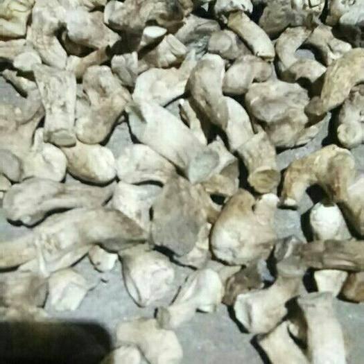 黑龙江省牡丹江市阳明区 精选双剪香菇脚,肉厚,干净,物美价廉