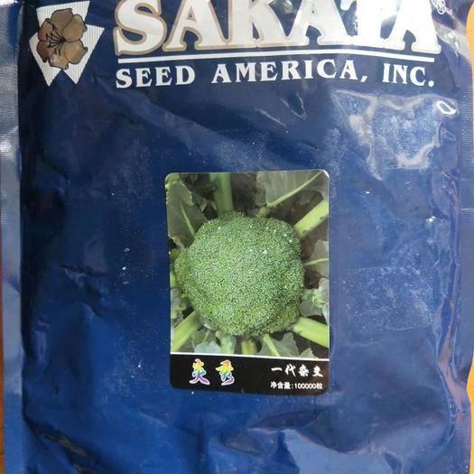 郑州二七区耐寒优秀西兰花种子 日本坂田炎秀,炎秀西蓝花种子100000粒