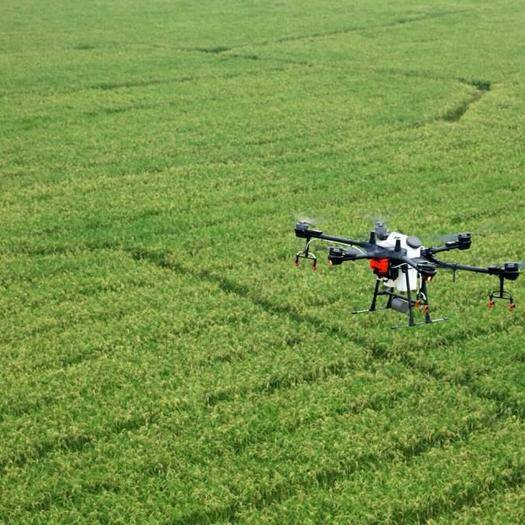 安徽省合肥市包河区无人机农药喷洒 无人机飞防植保服务