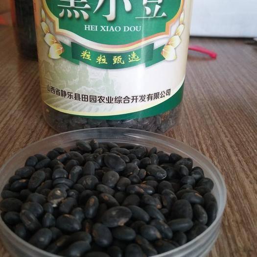 忻州靜樂縣 古老的黑豆農村老品種原始種植小黑豆小顆粒黑小豆黃芯扁顆粒