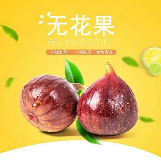 昆明 云南新鮮無花果3斤航空包郵云南特產水果一件代發