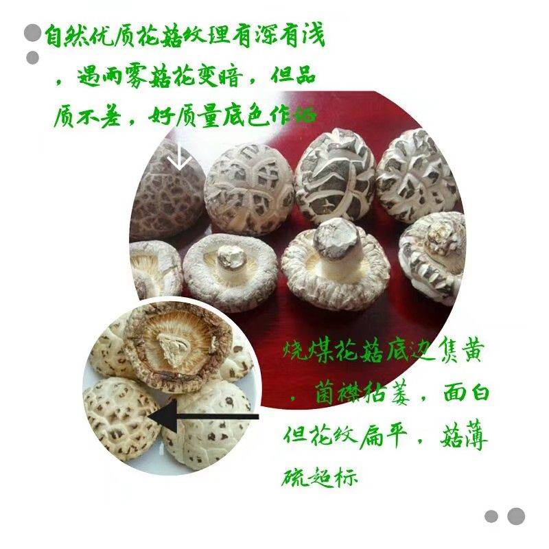 花菇 出口质量精品好菇自种植不烧煤规格从3到8精分选