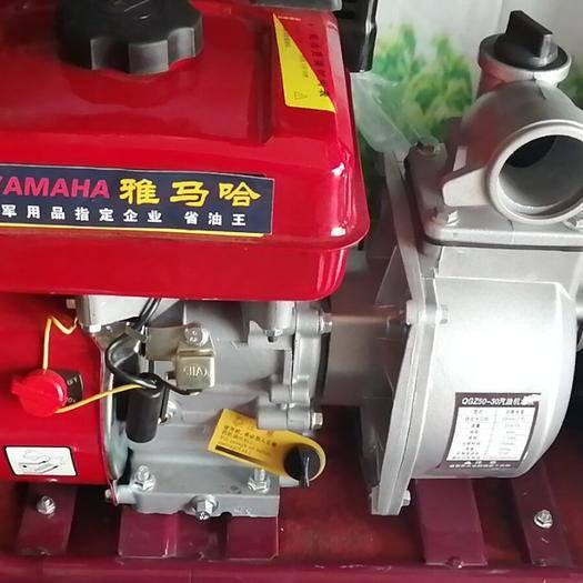 东阿县普通水泵 高扬程动力强劲抽水机可打药与抽水,一机可两用