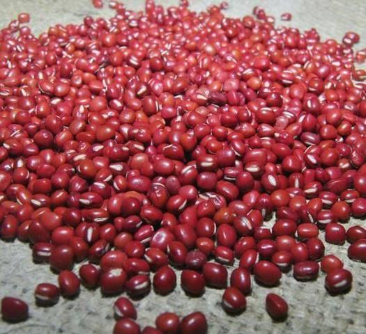 忻州繁峙縣 紅小豆19年新貨農家小紅豆一級顆粒飽滿可發紅豆芽無污染