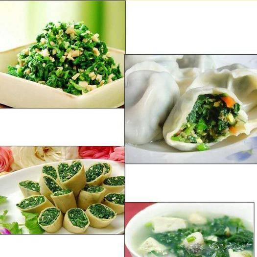 沧州 速冻荠菜馅,不含冰水,全国常年供货