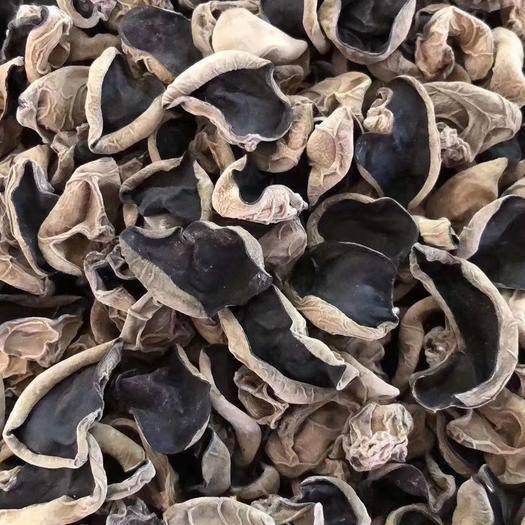 吉林蛟河市大叶木耳菜 黑色