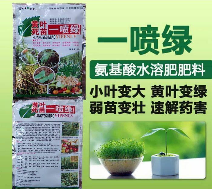 氨基酸肥料 一喷绿,死叶黄叶,枯萎黄萎,迅速缓解药害,死根烂根,小叶变大