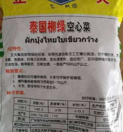 商丘夏邑县 空心菜种子泰国柳绿空心菜种子500g一袋