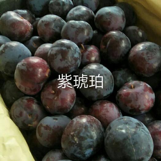 随州随县 紫琥珀色黑亮带粉,硬度好、味道甘甜,非常的美味应季热销中。