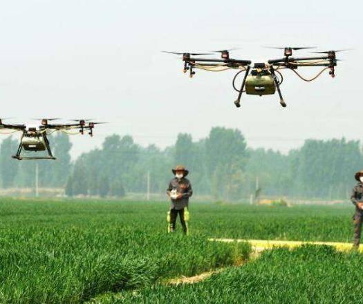 山东省济宁市微山县 无人机农药喷洒,无人机喷洒,农作物好帮手
