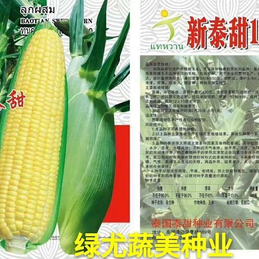 漳州南靖縣甜玉米種子 【主推】新泰甜10號 泰國泰甜種業出品,雙劍葉,超甜,大棒!