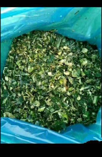 驻马店新蔡县青储草 本公司常年供应青储玉米,小麦秸秆,花生秧草粉有需要的朋友提前