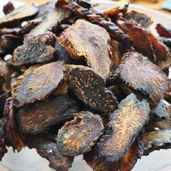 阿拉善肉苁蓉—3年以上秋季油切片—自然晾晒温和滋补—包邮到家