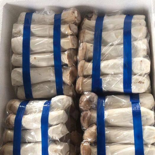 江苏省连云港市海州区鲜杏鲍菇 鲜杏鲍菇 特级 4cm~6cm