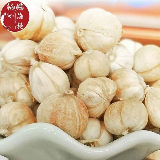 玉林 供應批發30kg白蔻 白豆蔻 香料白蔻批發承接大貨白豆蔻