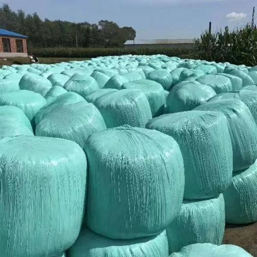 南阳新野县玉米青贮 无土无霉质量保证,2019新货质量保证