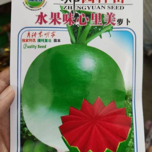 商丘夏邑县 水果萝卜种子